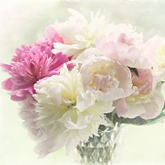 """Peony photograph,Shabby chic decor, """"Peony bouquet"""" pink peonies, spring home decor, floral photography, pastel, white,pink,still life on Etsy, $39.89 CAD"""