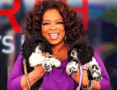 The new puppies, named Sunny and Lauren, came from PAWS, a no-kill animal shelter in Chicago. With the two new additions, Oprah is now the proud human pack leader to five adorable canines.