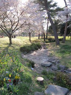 beppu park #japan #oita