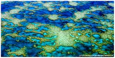 arial views of coral reefs | Aerial photography: Shallow water coral atolls in the Great Barrier ...