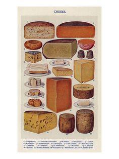Cheese, Isabella Beeton, UK Lámina giclée