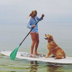 The 19-month-old golden retriever, Hampton,  has become a mascot for owner Whitney Lee's business, SUP Barre, which offers traditional barre classes atop paddleboards in the flat waters off the beach at First Landing State Park, Virginia Beach, Virginia, USA  - Coastal Living