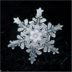 Snowflake, closeup photo.