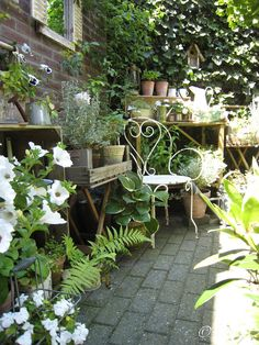 Small Courtyard Gardens, Small Gardens, Outdoor Gardens, Shabby Chic Garden, Garden Cottage, Small Backyard Landscaping, Small Garden Design, Garden Spaces, Dream Garden