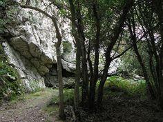 La grotte épipaléolithique, soit ca. -8000, de Roc'h Toul, une double chambre sur quarante mètres de profondeur, témoigne du plus ancien site d'implantation connu sur les bords de la Penzé. L'entrée de la grotte, qui abrite des chauves souris, est fermée.