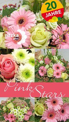 """Blumengroßhandel Ritzka: Blumenstrauß """"Pink Stars"""" Wie rosafarbene Sterne erstrahlen Germini und Rosen in Kombination mit zarten Weiß- und Grüntönen unseres ersten September-Jubiläumsstraußes."""