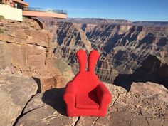 #grandcanyon #honeydewrabbit #그랜드캐년 #허니듀래빗 Grand Canyon National Park, National Parks, Wanderlust, Tours, World, Nature, Travel, The World, Naturaleza
