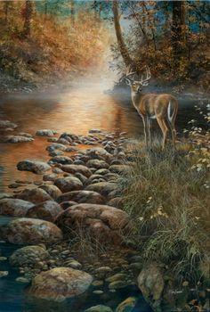 Deer Print Beside Still Waters