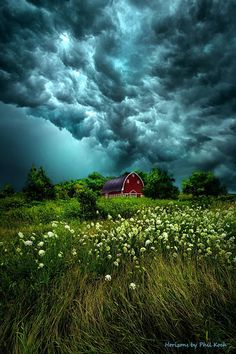 Riding the Storm by Phil Koch .have always been amazed by the occasional bright blossoms under some of the darkest storm clouds. Beautiful Sky, Beautiful Landscapes, Beautiful World, All Nature, Amazing Nature, Pretty Pictures, Cool Photos, Landscape Photography, Nature Photography