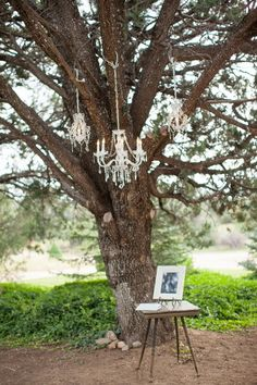 Cute idea! This couple hung crystal chandeliers from the trees for their vintage outdoor wedding {Photography by Verdi}