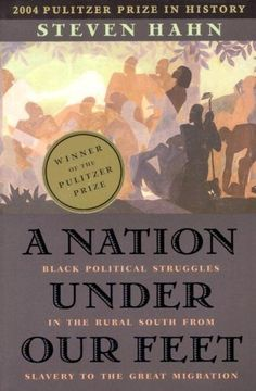 A Nation under Our Feet: Black Political Struggles in the Rural South from Slavery to the Great Migration by Steven Hahn,