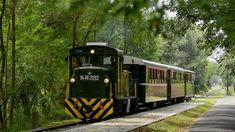 Másfél év után szünet után újra szállít utasokat Debrecen és Hármashegyalja között az ország legrégebben működő erdei vasútja, amelyet 138 évvel ezelőtt nyitottak meg, írta a Dehir. A Zsuzsi Erdei Vasút első 21,5 kilométeres szakaszát a debreceni fatelep és Nyírmártonfalva között 1882. július 16-án, 138 évvel ezelőtt nyitották meg. Ennek évfordulóját ünnepli most a szinte teljesen megújult Zsuzsi. A korszerűsítés keretében felújítottak három mozdonyt. A legpatinásabb jármű az 1923-ban épült… Train, Vehicles, Car, Strollers, Vehicle, Tools