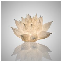 LOTUS - Oznoon. Paper light sculpture/lamp by Junior Fritz Jacquet.