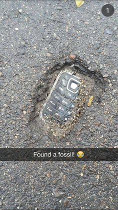 You Make Me Meee Mee ツツ — Found a fossil!