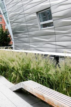 Korean feather reed grass, building and bench @ the High Line NYC.