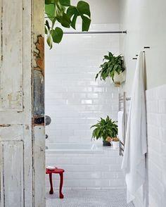 Essa casa na Cidade do Cabo foi transformada em um verdadeiro oásis na África do Sul. No banheiro, os azulejos brancos iguais aos utilizados no metrô londrino revestem parte das paredes. Para dar cor ao ambiente, os moradores colocaram alguns detalhes coloridos, como os vasos com plantas de sombra e o banquinho vermelho. Foto Greg Cox/Bureaux #cidadedocabo #áfricadosul #azulejosbrancos #detalhescoloridos #plantas #plantasdesombra #vasosdeplantas #banquinhovermelho #decoraçãopelomundo…