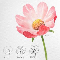 Flower Art Drawing, Flower Drawing Tutorials, Painting & Drawing, Beautiful Flower Drawings, Flower Designs For Painting, Flower Drawings With Color, Easy Flower Drawings, Flower Sketches, Floral Drawing