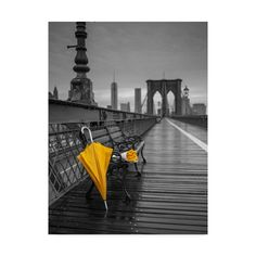 Yellow umbrella and bunch of roses on bench on pedestrian pathway Brooklyn bridge New York Canvas Art - Assaf Frank x Umbrella Photography, Yellow Photography, Glitter Photography, Splash Photography, Black And White Photography, Photography Tricks, Digital Photography, Creative Photography, Color Pop