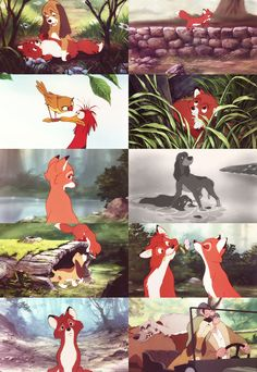The Fox and the Hound! I'll never get to old for this movie!