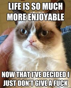 These are the Grumpy Cat memes I have been saving for no other reason than to laugh when I get grumpy. I mean, isn't that what Grumpy Cat is all about? Grumpy Cat Quotes, Funny Grumpy Cat Memes, Funny Animal Memes, Animal Quotes, Funny Animal Pictures, Funny Cats, Funny Animals, Funny Jokes, Grumpy Kitty