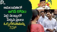 Chandrababu naidu, ys jagan, ys jagan fans, ysjagan controversy, AP Assembly, YSRCP, YCP, MLA Roja, assembly budget session, ys jagan punch dialogues, ys jag.
