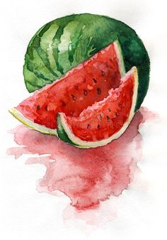 Photo about Watercolor painting. Still life. Sliced watermelon. Illustration of food, watermelon, life - 28047934