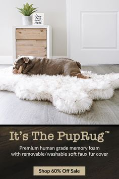 Get Your Dog Trained at Home without Professional by Reading The 10 Pro Tips for Dog Training by Experts and Get Rid of All Hassles! Agility Training, Dog Agility, Potty Training, Crate Training, Bulldogs, Baby Animals, Cute Animals, Orthopedic Dog Bed, Animals