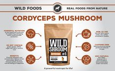 Learn about Cordyceps Mushroom Powder Extract Superfood on our Wild Foods Infographic. Matcha Benefits, Lemon Benefits, Mushroom Benefits, Growing Mushrooms, Types Of Tea, Matcha Green Tea, Superfood, Real Food Recipes, Health Tips