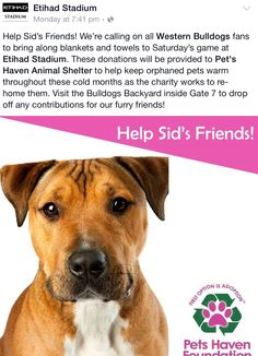 Pop down to Etihad Stadium this Saturday and help keep our furry friends warm.