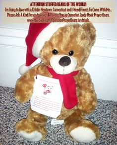 This is an outreach of love to the children of Sandy Hook Elementary School. Our goal is to provide a Prayer Bear for every child who attends Sandy Hook Elementary. Click to see our Facebook Page.