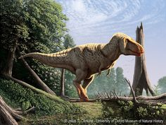 Julius Csotonyi | One of my new paleoart pieces -- this one featuring Tyrannosaurus rex -- that was recently unveiled as one of a set of panels at the beautiful University of Oxford Museum of Natural History, to accompany their dinosaur skeletal material on display. I completed the set of paintings digitally using a stylus and tablet, a lot like I would use traditional acrylic paint, rather than employing photographic compositing. …