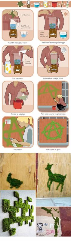 How to make moss words and art. Would also be great to cover pots and or rocks in moss.