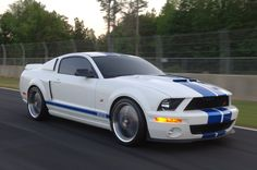 Temple Performance Cars Legend Mustang