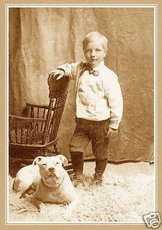 Por mais de cem anos Pit Bulls servem de babás nos Estados Unidos