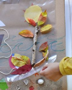 This adventurous art project will send kids on a scavenger hunt for fall materials they can use in their artwork. This craft also teaches kids about seasons. Great activity to do before thanksgiving.