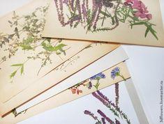 сухоцветы Resin Jewelry, Dried Flowers, Craft, Jewelry Making, How To Make, Resin, Dry Flowers, Creative Crafts, Basteln