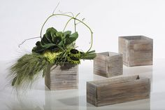 Gray wood boxes for succulents