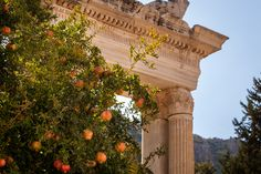 Pomegranate Trees Among the Ruins by Jason Noble, October 2014. (Eleusina, Greece)