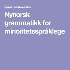 Nynorsk grammatikk for minoritetsspråklege