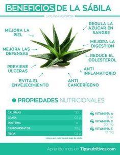 Infografia de la sabila #nutricioninfografia