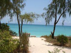 andBeyond Vamizi Island - Condé Nast Traveler
