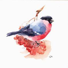WatercolorsCMwatercolors