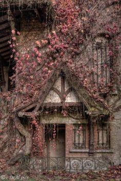 Photography Sad Abandoned Buildings New Ideas Abandoned Buildings, Abandoned Castles, Abandoned Mansions, Old Buildings, Abandoned Places, Haunted Places, Abandoned Ohio, Abandoned Factory, Abandoned Cars