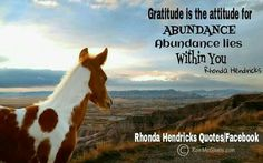 Gratitude is the attitude for abundance; abundance lies within you.😊💖 image by: Ron McGinnis Rhonda Hendricks quotes Baby Horses, Wild Horses, Cowgirl And Horse, Attitude Of Gratitude, Horse Pictures, Palomino, Horse Photography, Horse Breeds, Equestrian