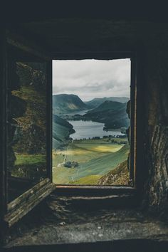 "renamonkalou: ""The world through a window Adam Firman """