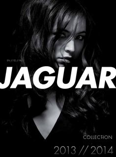 #ClippedOnIssuu from Jaguar Catalog EN-ES-RU