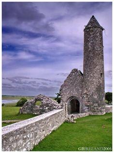 Temple Finghín's ruins-Clonmacnoise, Offaly, South, Ireland Copyright: Gianluca Boni