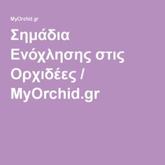 Σημάδια Ενόχλησης στις Ορχιδέες / MyOrchid.gr Flowers, Gardening, Decoration, Orchids, Lawn And Garden, Decor, Decorations, Decorating, Royal Icing Flowers