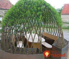 Willow trees - forced to grow as we want = wind shelter for fire place Dream Garden, Garden Art, Garden Design, Amazing Gardens, Beautiful Gardens, Garden Igloo, California Decor, Garden Structures, Outdoor Art