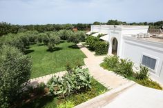 Nestled among olive groves, with its twinkly lights and manicured gardens, Masseria Ulivi is a breathtaking location in the Puglian countryside.